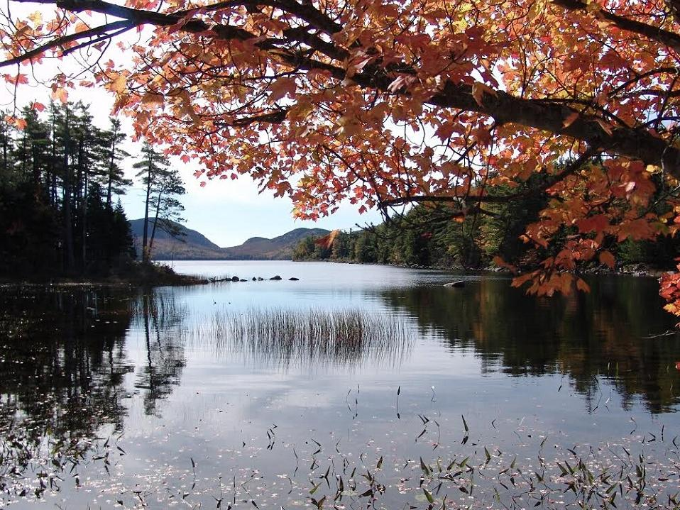 7 Day New England Fall Foliage Tour Maine Route Boston