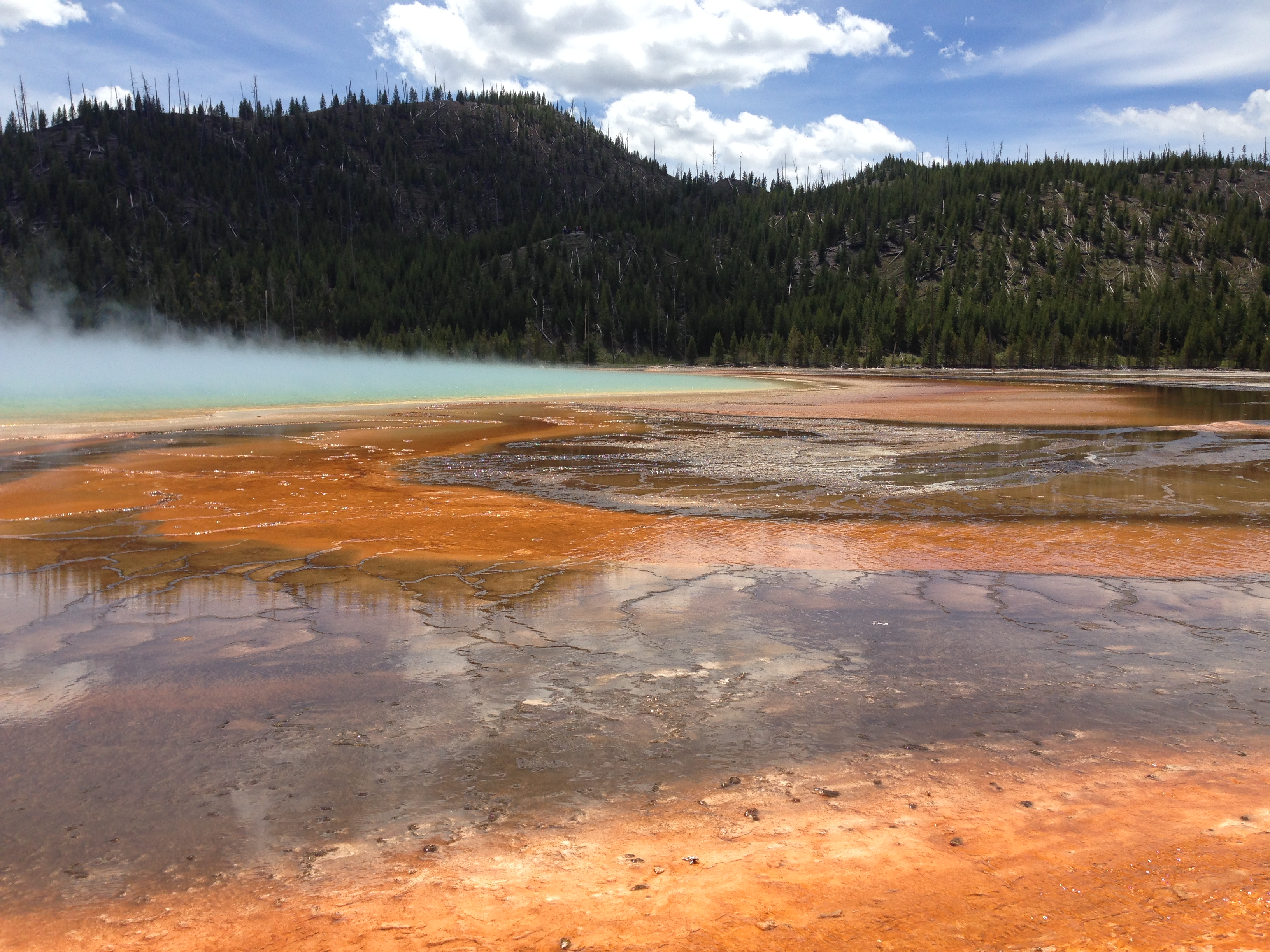 Yellowstone Grand Prismatic Hot Spring