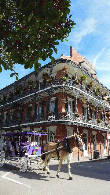 9 Day Miami Chicago New Orleans And St Louis Tour From