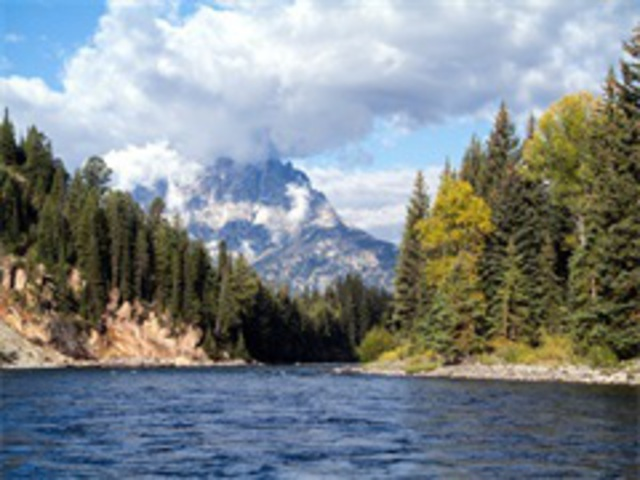 5-Day Yellowstone National Park, Mt  Rushmore, Grand Teton Tour from Salt  Lake City