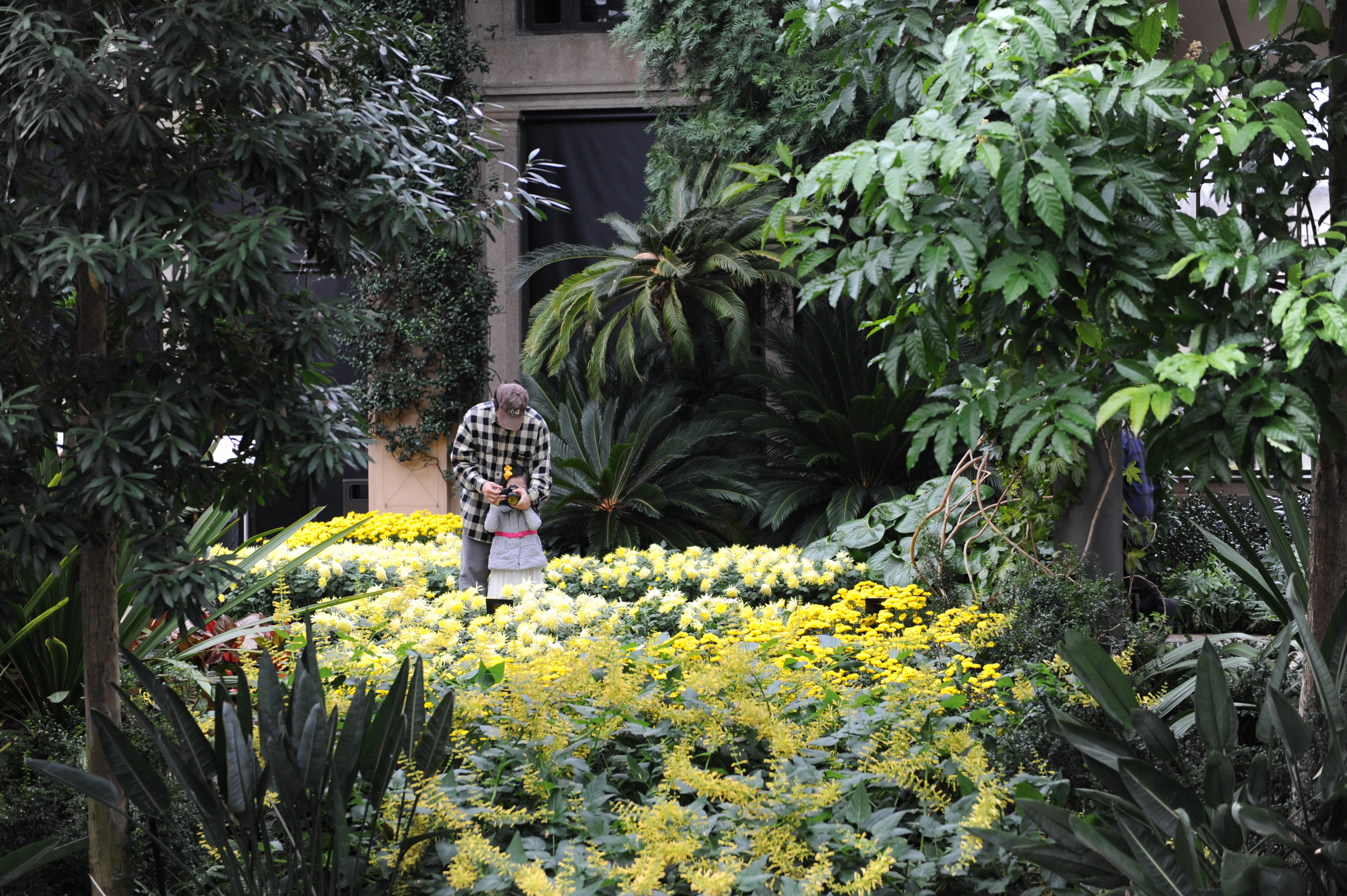 Christmas Longwood Gardens Tour Pictures To Pin On Pinterest Thepinsta