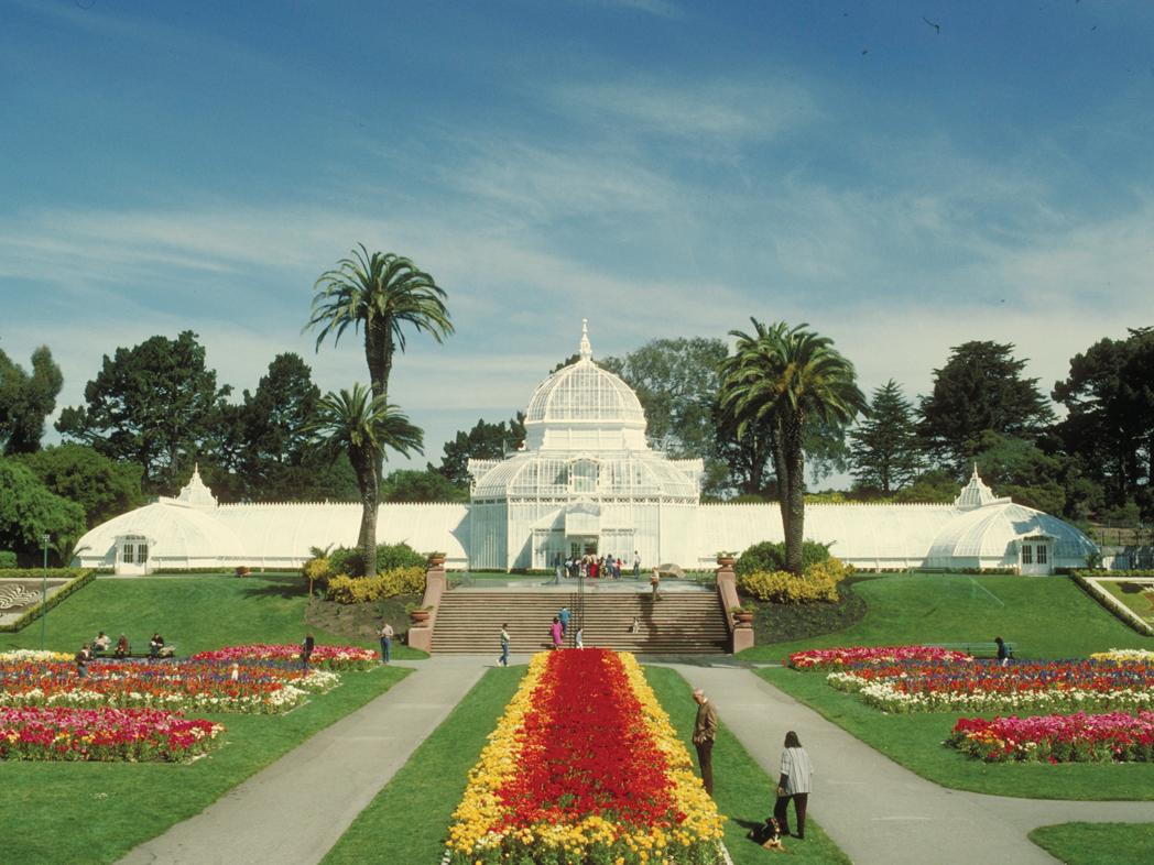 San Francisco : Conservatory Of Flowers