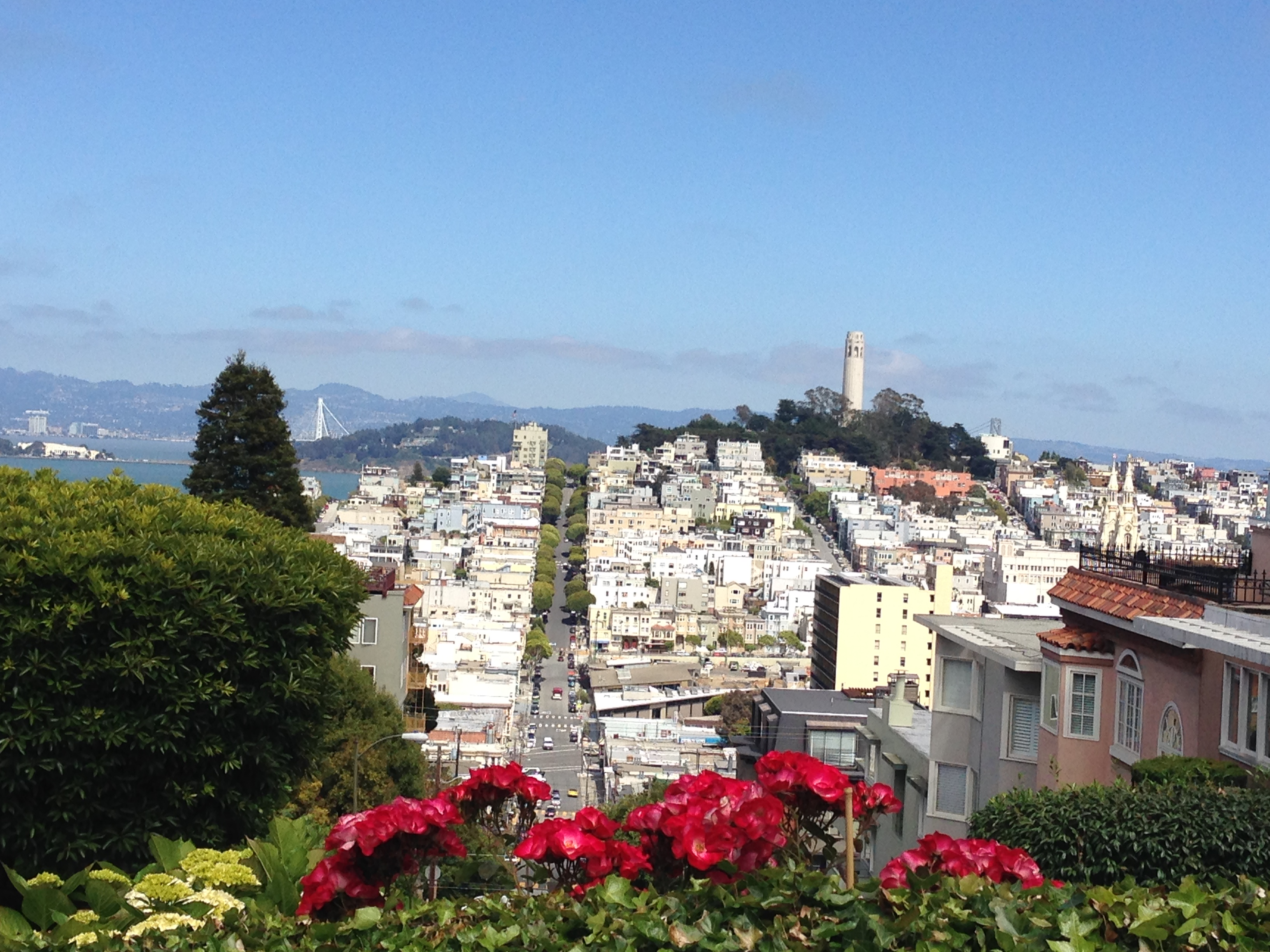 Hotels On Lombard St San Francisco