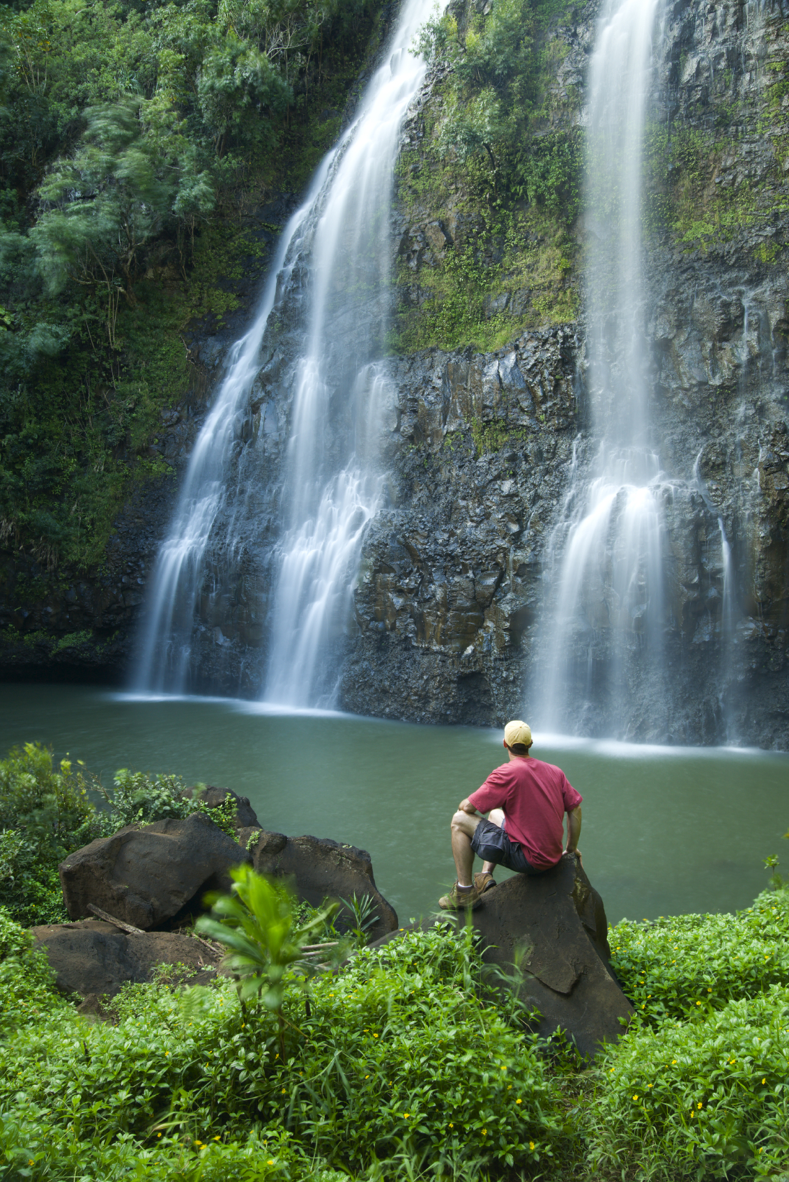 Reviews For 1 Day Waimea Canyon And Fern Grotto Tour