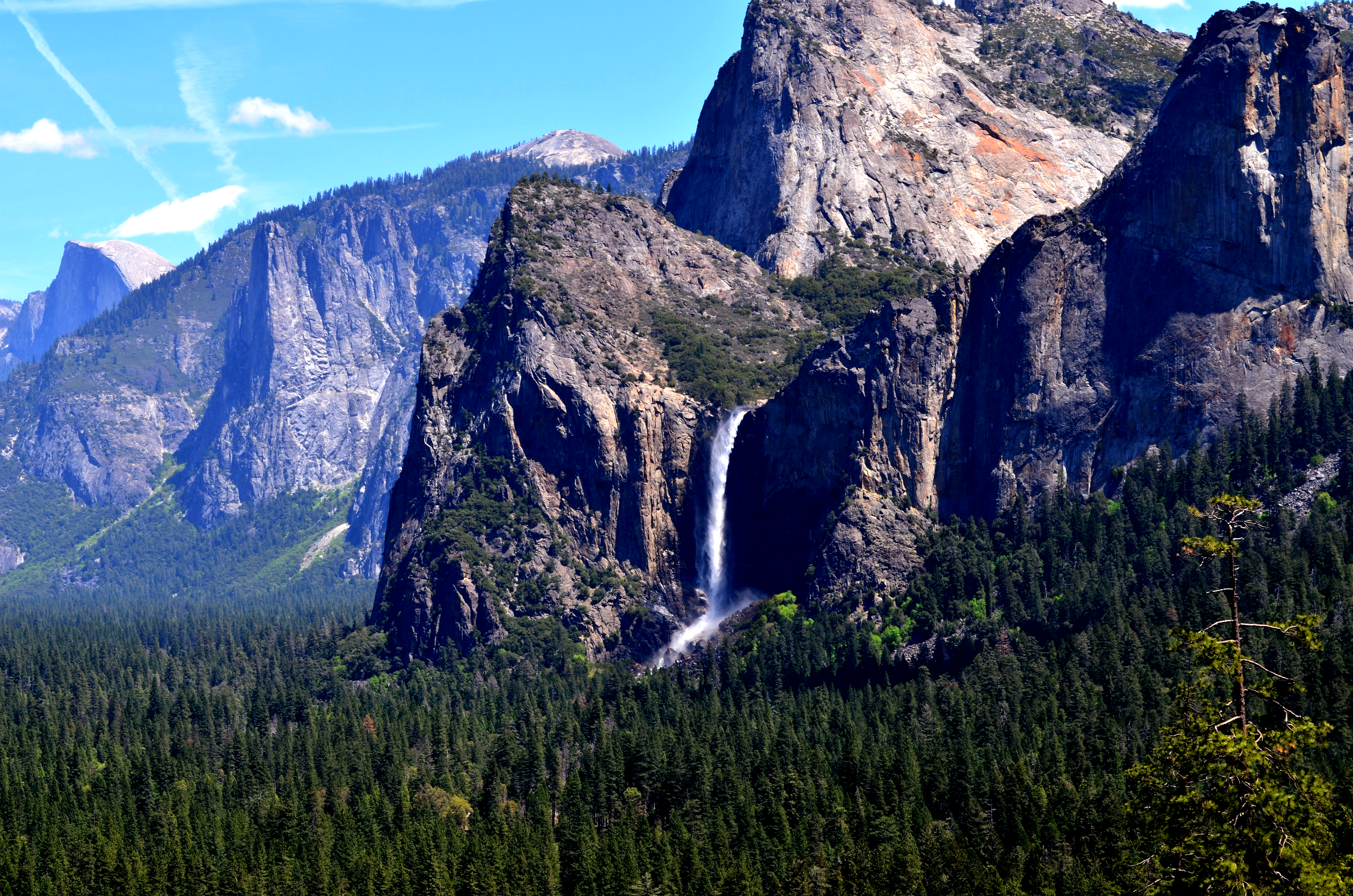 Yosemite Park  Day Tour