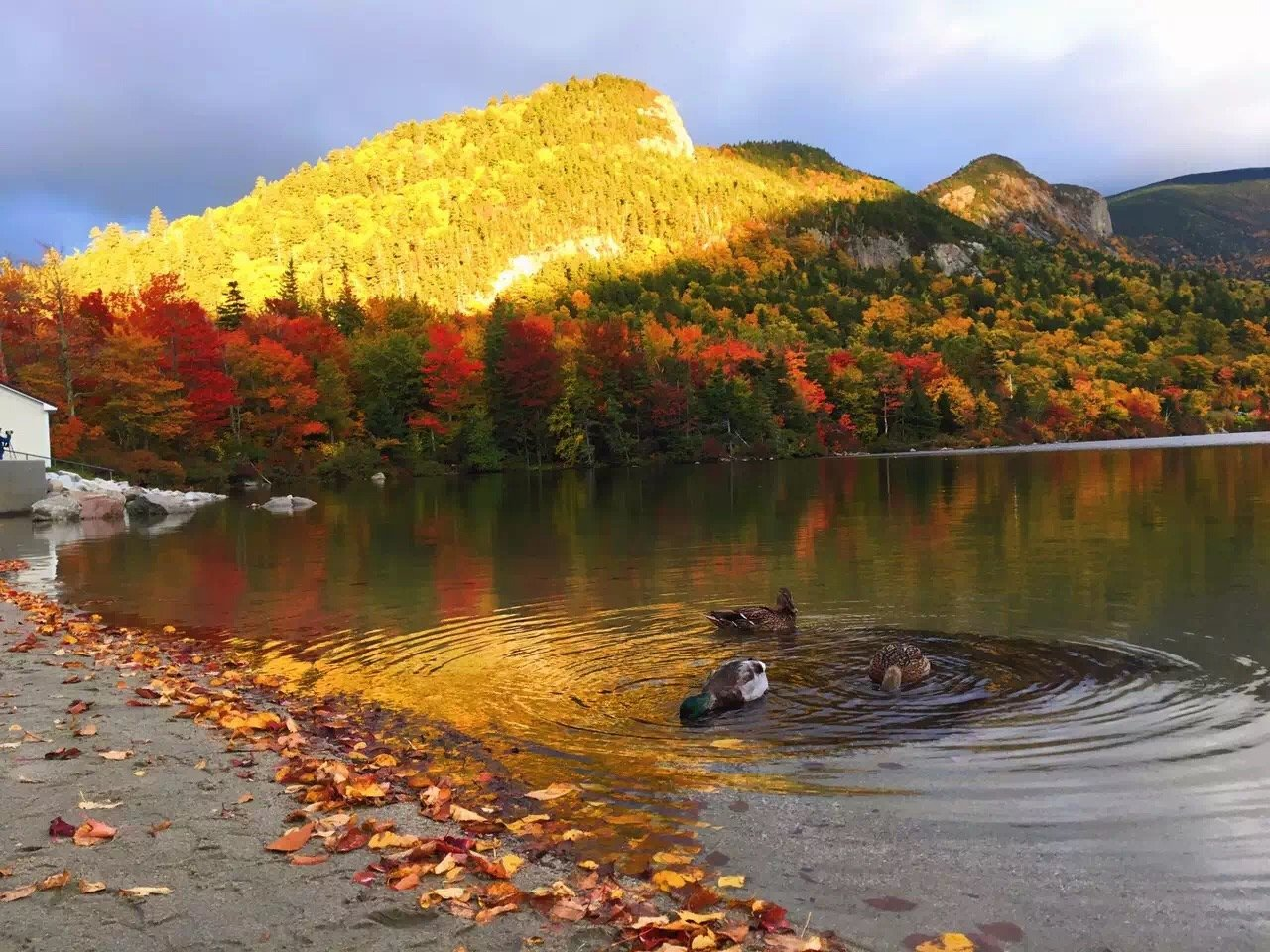 New England 2018 Fall Foliage, Scenic Drives, Tours ...