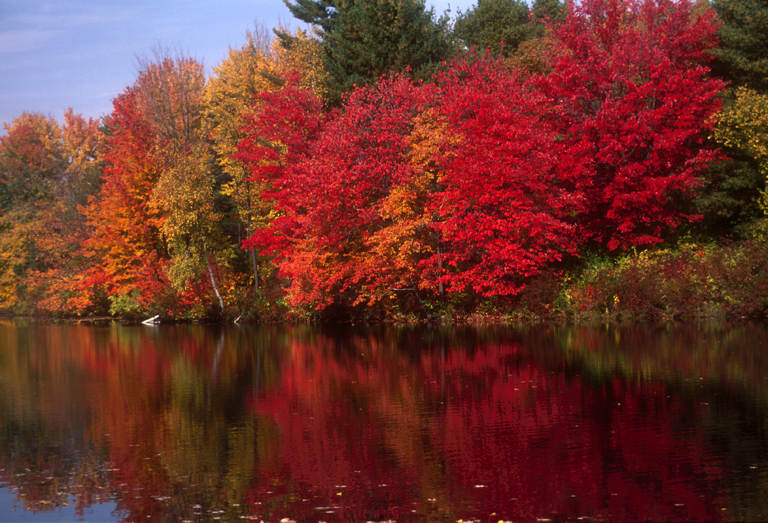 Fall Foliage Train Tours in the USA - Vacations By Rail