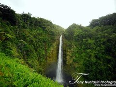 Hawaii Tours Vacation Packages Sightseeing Tours To Honolulu Hilo Maui
