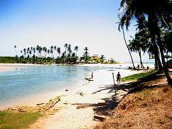 1-Day Tour to Duas Barras Beach and Marape Dunes from Maceio - Group Spanish and Portuguese