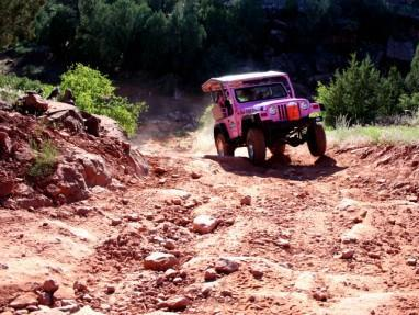 4-hr Ancient Ruins, Diamondback Gulch Combo Pink Jeep Tour from Sedona