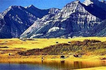 6-Day Delightful Canadian Rockies Tour from Vancouver/Seattle (Summer Tour)