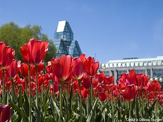 2-Day Canada Ottawa Tulip Festival Tour from Boston