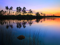 1-Day Everglades Park and Miami City Tour