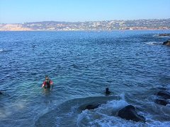 San Diego Beach, La Jolla Coves & Shores Surfing or Kayaking Tour from San Diego