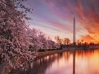 4-Day Washington DC Cherry Blossom, Philadelphia, Baltimore and Woodbury Tour from Montreal