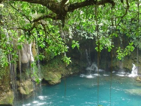 6-Day Huasteca Potosina Jungle Adventure from Mexico