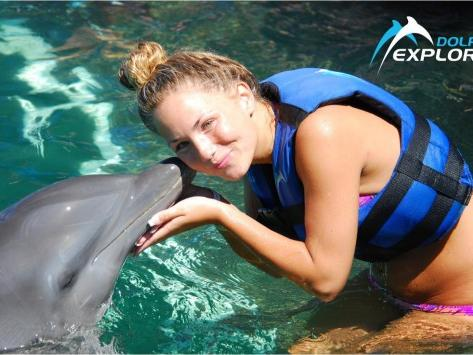 Dolphin Explorer Tour from Punta Cana
