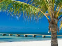 12-Day Key West, Miami, Orlando Theme Parks Tour  from Miami/Fort Lauderdale