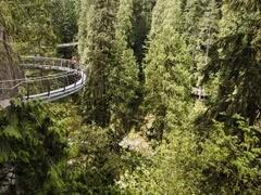 Vancouver City and Capilano Suspension Bridge Tour with Hotel pick-up