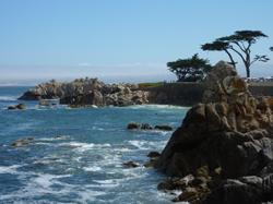 1-Day Monterey and Carmel Tour from San Francisco