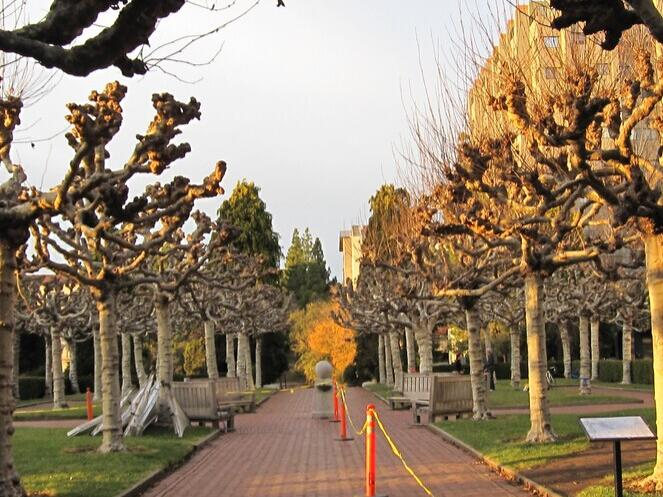 6-Day Grand Canyon, Los Angeles, Berkeley and Standford Deluxe Tour from Las Vegas, Los Angeles Out