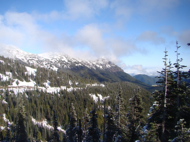 1-Day Olympic National Park Tour from Seattle/Renton
