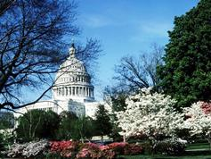 2-Day Washington Round Trip By Train from New York