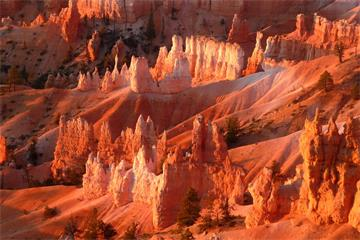 6-Day Antelope Canyon, Lake Powell, Bryce Canyon, Las Vegas Bus Tour from San Francisco