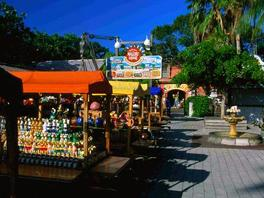 1-Day Key West Tour from Miami
