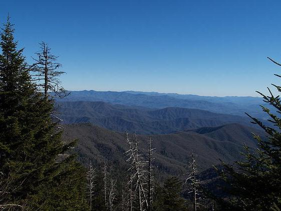 4-Day Tennessee & Great Smoky Mountains Tour from Boston