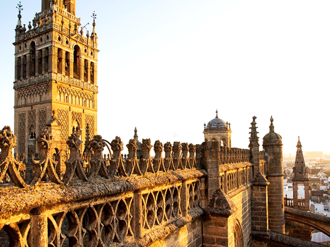 9-Day Andalusia & Mediterranean Coast Tour from Madrid