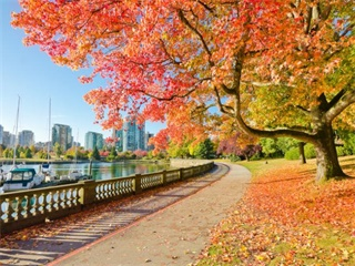 3-Day Vancouver and Victoria Tour from Vancouver (Summer Tour)
