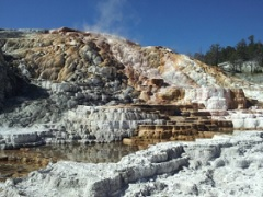 14-Day Yellowstone Overnight, Grand Canyon West, Theme Parks Tour from Los Angeles with Airport Transfer