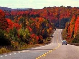 2-Day Vermont Foliage, Lake Champlain, Teddy Bear tour from Boston
