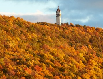 1-Day Maple Foliage Tour in Connecticut from New York