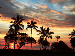 2-Day Hawaii Big Island and Maui Tour from Honolulu