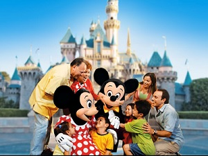 1-Day Disneyland California Adventure Ticket & Hotel Transfer from Los Angeles