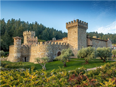 1-Day Napa Valley & Castello Di Amorosa Tour from San Francisco