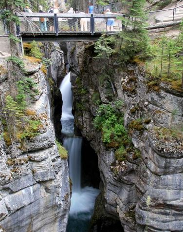 5-Day Canadian Rockies, Banff National Park, Jasper National Park Summer Tour from Vancouver