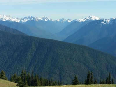1-Day Olympic National Park Tour from Seattle