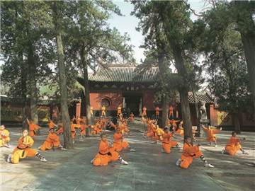2-7 Days Xi'an-Luoyang-Shaolin-Zhengzhou Flexible Tour from Xi'an (Blue Line, Friday Departure)