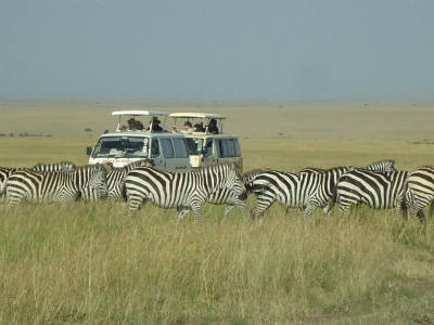 6-Day Magical Kenya Scheduled Budget Safari Tour from Nairobi with Airport Transfer