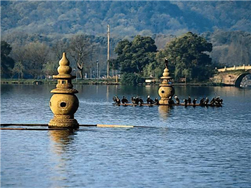 2-7 Days Suzhou, Nanjing, Wuzhen, Hangzhou Tour from Hangzhou (Green Line, Friday Departure)