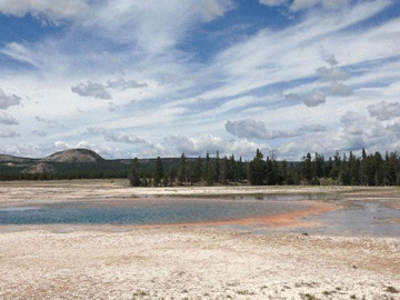 1-Day Yellowstone Upper Loop Tour from West Yellowstone