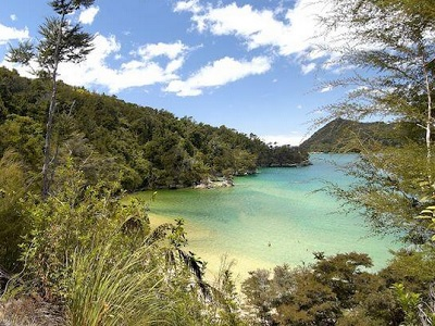 5-Day South Island Heaphy Tour from Christchurch