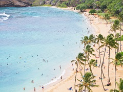 4-Day Pearl Harbor, Honolulu, Mini-Circle Island Tour from Honolulu with Airport Transfers