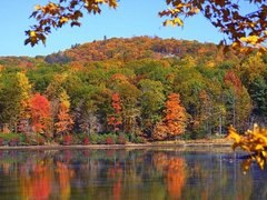 1 Day Woodbury Shopping & Maple Foliage Tour from New York