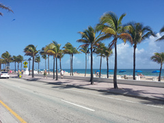 5-Day Miami, Everglades, Key West, Fort Lauderdale, Fort Myers Tour from Miami/Fort Lauderdale with Airport Transfers