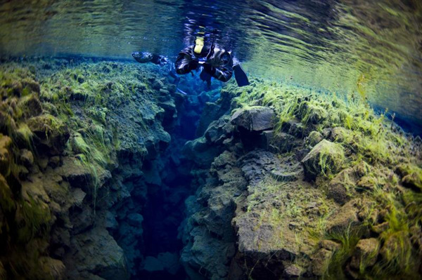 Magnificent Snorkeling, Silfra In Pingvellir National Park