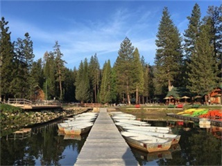 2-Day Yosemite, Sequoia and Kings Canyon National Park, Hilmar Cheese Company Tour from San Francisco